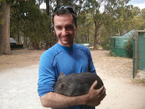 Photo: And look who else we found... another friendly wombat.