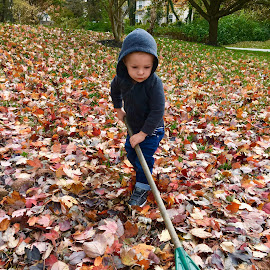 The little helper. by Peter DiMarco - Babies & Children Children Candids ( toddler, fall, children, children candids, child )