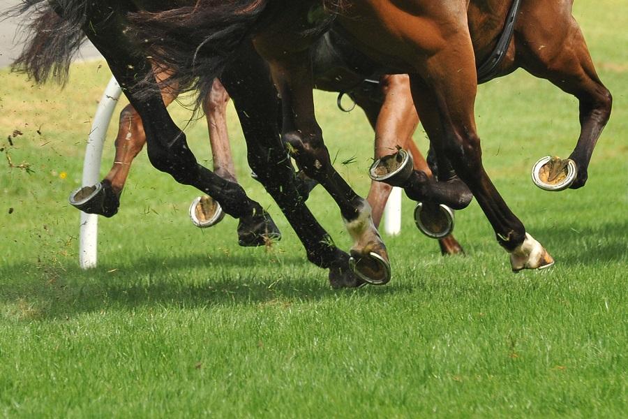 Snaith span op wolk nege as hulle Equus-toekennings oorheers