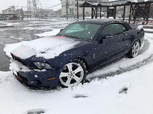マスタング コンバーチブル  2011のカスタム事例画像 Mustang_abtさんの2018年12月09日10:51の投稿