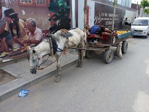 Photo: Beijing - horse cart next to junction Xi'erqi/Xi'erqi Xilu on sleepy Sunday afternoon