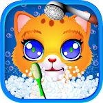 Cat Pet Wash Icon
