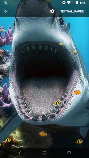 3D Shark Live Wallpaper Screenshot 7