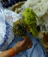 Photo: Herbs used to make shades of green dye