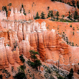 Bryce Canyon Pillars by Mike Price - Landscapes Mountains & Hills ( utah, national park, bryce canyon, nature, mighty 5, geologic formations, landscape )