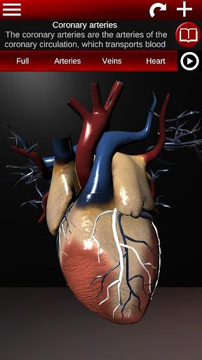Circulatory System in 3D (Anatomy) 1.58 screenshots 5