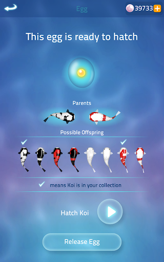 Zen Koi 2 apkpoly screenshots 16