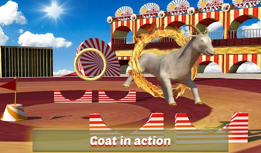 Goat-Monkey-Stunts 12