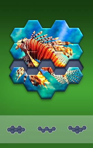 Hexa Jigsaw Puzzleu2122  screenshots 12