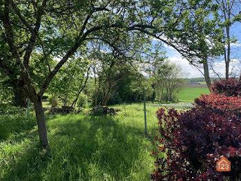 terrain à Souilly (55)