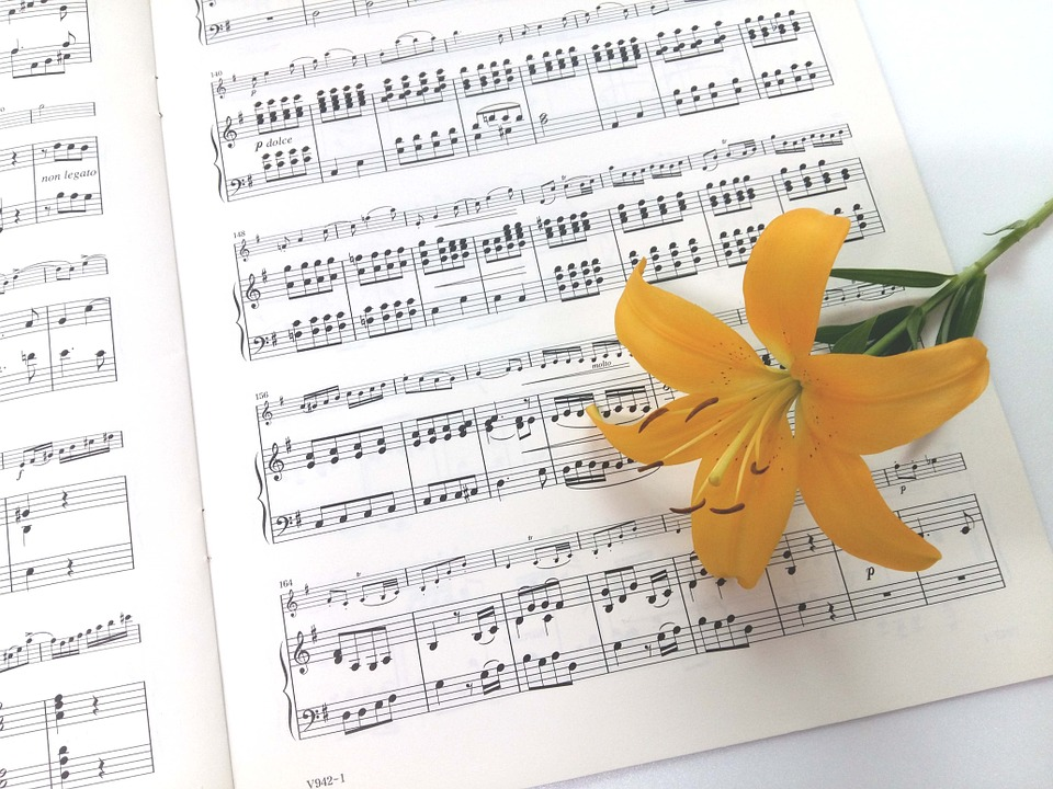 Top 12 canciones sobre flores