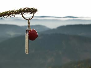 Photo: (1.11. 2014) Travel bug  Big Apple před tím, než jej vložím do keše na Lysé hoře