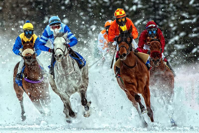 Cavalli sul ghiaccio di Giulio61