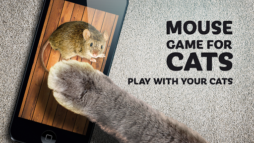 mouse game toy for cats screenshot 1