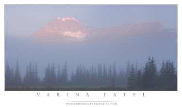 Photo: Solitude  One of the biggest reasons I choose to photograph nature is because I love solitude. I find that this is true for many nature and landscape photographers. We seem to share an appreciation - no... it goes beyond that - a NEED for solitude.  I get along with people just fine. I don't mind speaking to large crowds. I can navigate my way through a city without a problem...  But I'd much rather be in the middle of nowhere. No cars driving by. No airplanes flying overhead. No lawn mowers or leaf blowers or weed trimmers. No radio or television. Just birdsong and the breeze through the branches and the trickle of the water over the rocks. I'm perfectly happy out there for hours. Days. Weeks.  How about the rest of you? What is it about nature photography that keeps you coming back for more?