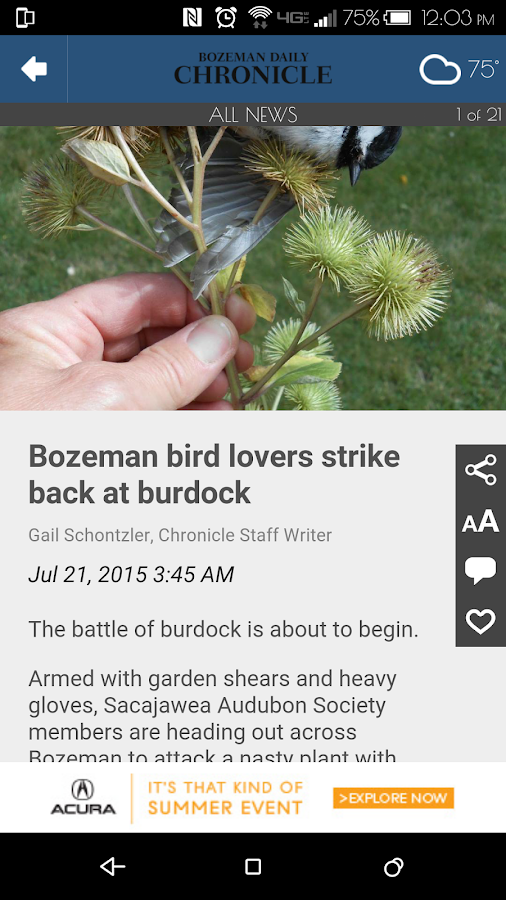 Bozeman Daily Chronicle- screenshot