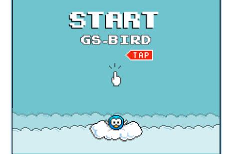 GS FlyBird - náhled