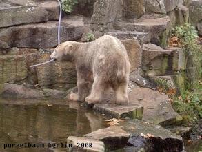 Photo: Knut holt sich den Schlauch ;-)