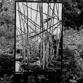 k by Dušan Gajšek - Black & White Abstract