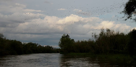 Photo: ellas cruzando el arroyo