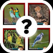 Cuanto sabes de pájaros ?