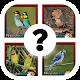 Cuanto sabes de pájaros ? (game)