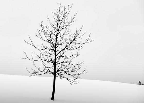 Nella neve di Ro51