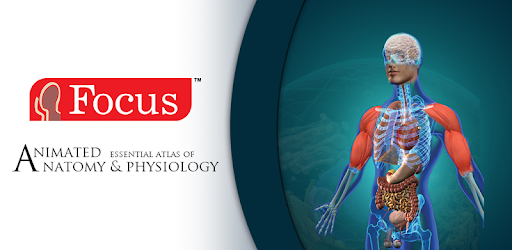 Anatomy Physiology Animated Apps On Google Play