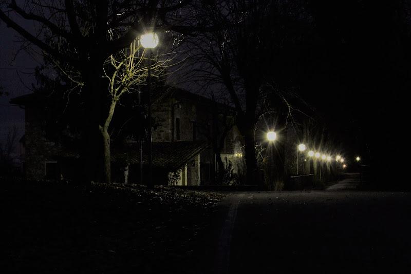 notte da brividi di elena_magnani