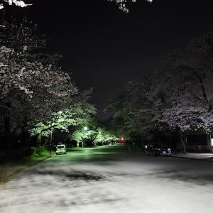 フーガ KY51 のカスタム事例画像 ぽんぽん丸さんの2020年03月26日09:45の投稿