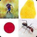 Dream pictures Arabic Quiz icon