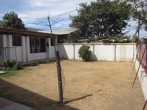 Photo: Front yard