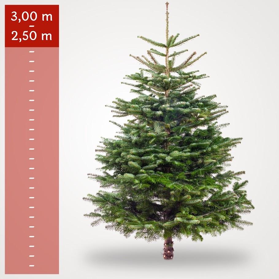 Stort juletr 2 50 3 00 meter kr for Schreibtisch 2 50 meter