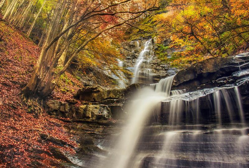 Cascata d'autunno di Elena Salvai