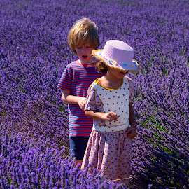 Lavender Fields by Stanley P. - Babies & Children Children Candids