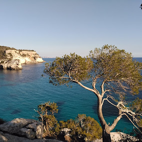 Macarella, Menorca by Luis Felipe Moreno Vázquez - Instagram & Mobile Android ( cliffs, waterscape, trees, sea, menorca, spain )