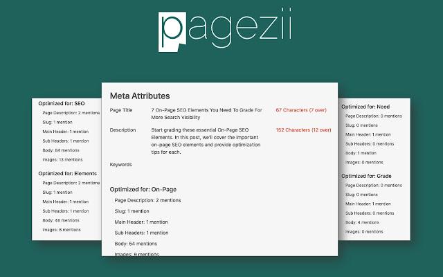 Pagezii SEO + AdWords