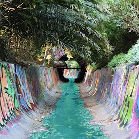 by Lachlan Adams - City,  Street & Park  Street Scenes ( blue, graffiti, street art, drain, sydney )