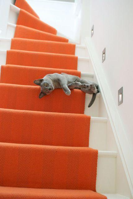 Carpets and Runners: Give your staircase a makeover
