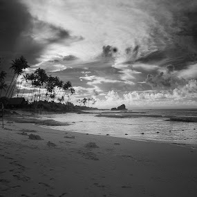 Koggala Epic  Sunrise by Souhayl Bk - Landscapes Beaches ( clouds, monochrome, waves, palm trees, beach )