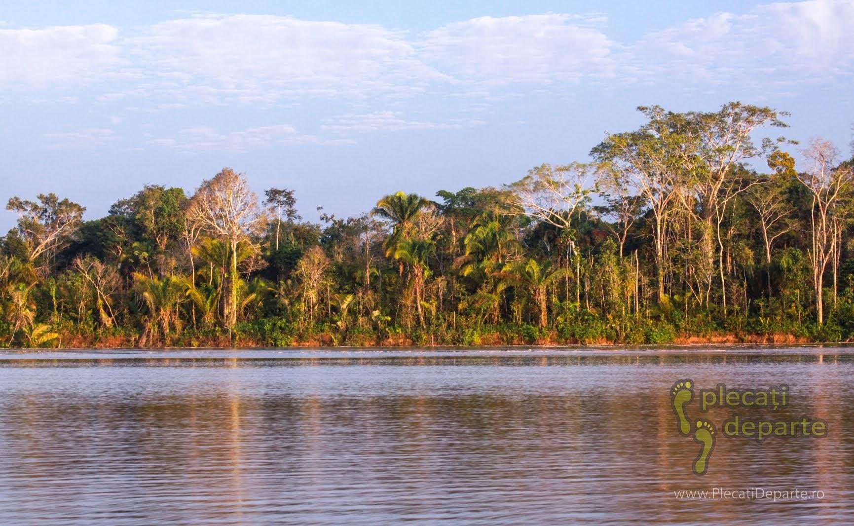 Raul Huallaga, afluent al fluviului Amazonian, in jungla amazoniana, in Peru