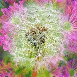 Spring Garden by Millieanne T - Digital Art Things
