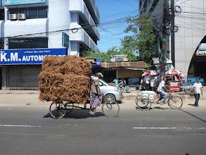 Photo: ... slupky od kokosových ořechů ...