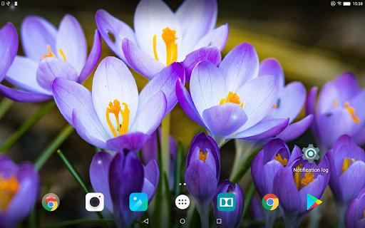 Beautiful Spring Flowers Live Wallpaper 1.0.4 screenshots 9