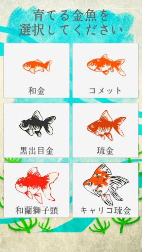 癒しの金魚育成ゲーム