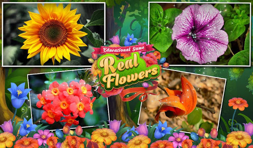 Educational Game Real Flowers