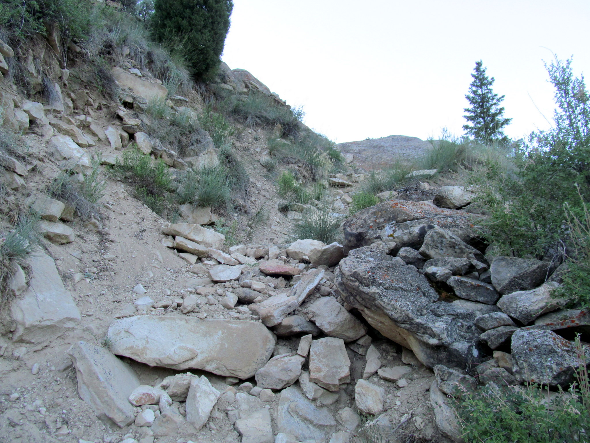 Photo: Rocky section of trail