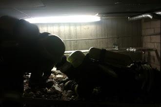 Photo: Der leichtere Verletzte wird aus dem Gefahrenbereich gerettet
