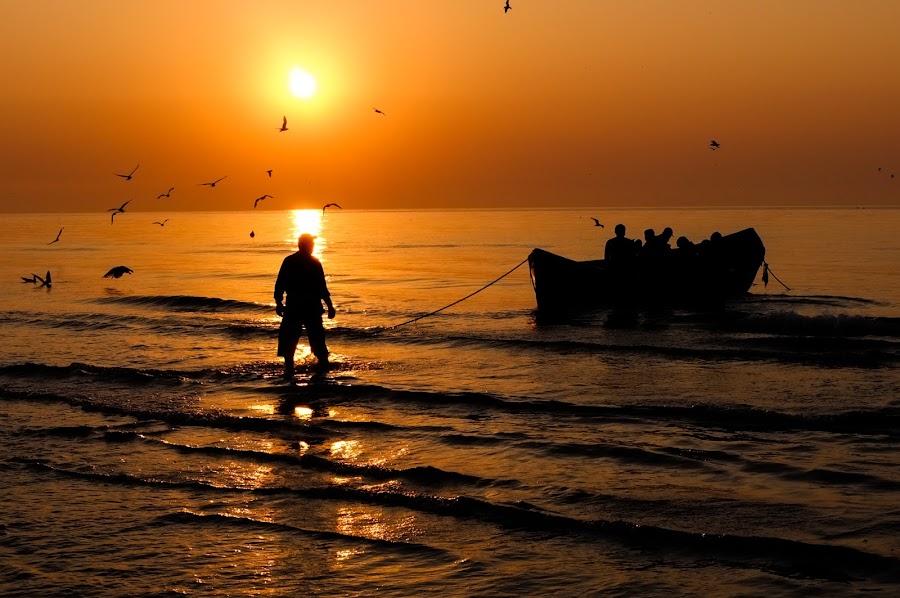 Black Sea Fishing by Catalin Caciuc - Landscapes Sunsets & Sunrises ( silhouette, sea, fishing, sunrise, black )