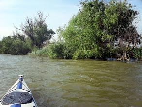 Photo: Ez már nem igazán part, szétoszlik a folyó.